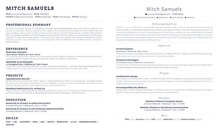 Styles For Any Profession.  Updating Resume